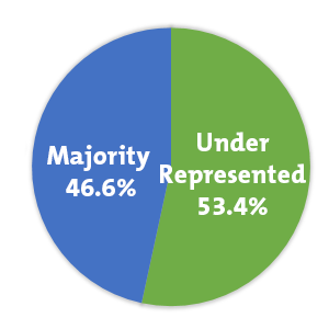 Underrepresented 53.4%, Majority 46.6% (Graphic)